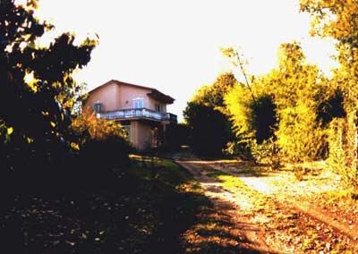 購入時の家、門から見たところ